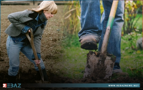 بهدف دراسة جودة التربة.. حملة في سويسرا لدفن ألفي زوج من الملابس الداخلية